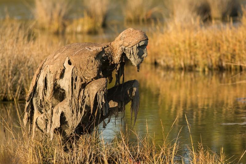 une des sculptures dans le marais de Sené dans le Morbihan