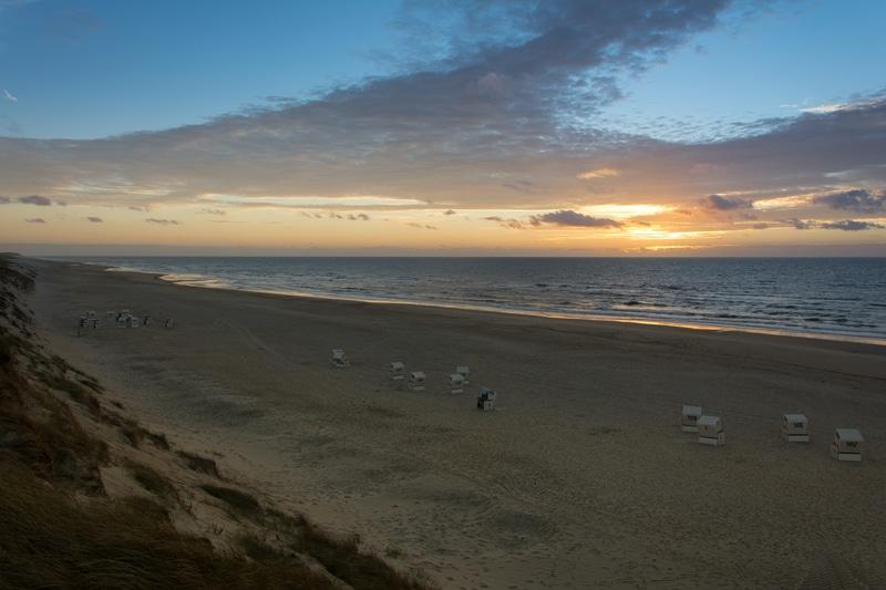 Sylt, le paradis des oiseaux